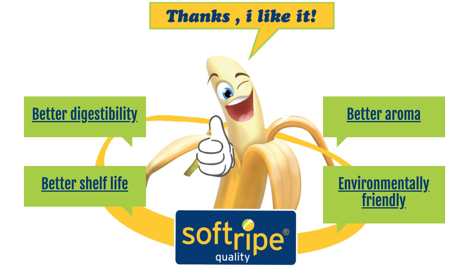 Softripe Ripening Rooms Australia | Softripe Australia