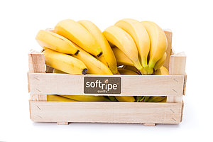 Softripe Ripening Rooms Australia | Fruit Ripening Technology | Bananas